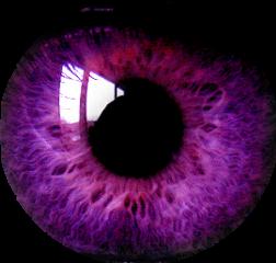 ojos freetoedit