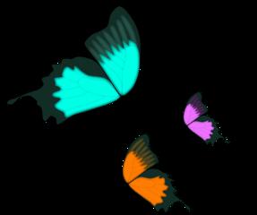 ftestickers blue pink orange flying