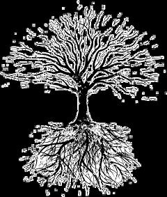 interesting sticker tree of life