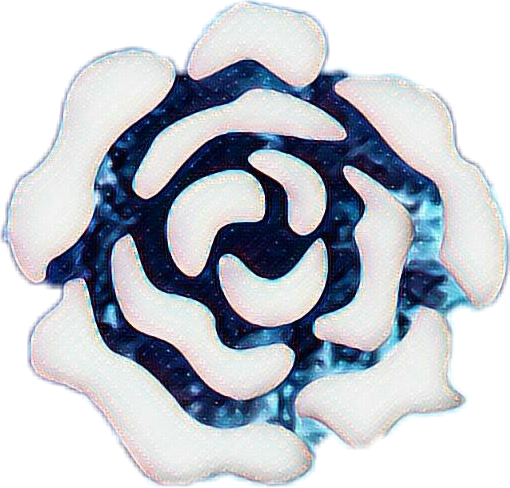 #rose #amy rose #blue #whiterose #pastel