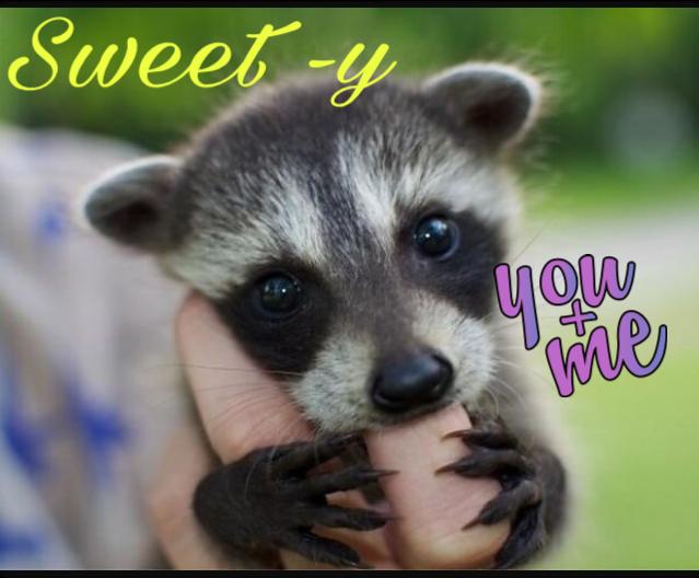 #sweety-iest animal#freetoedit