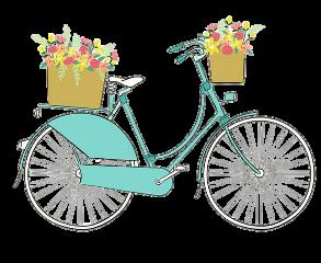 bike freetoedit