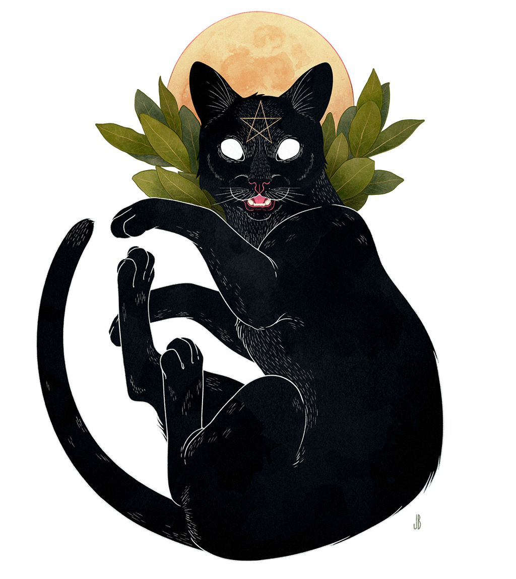 #cat #moon #dark#freetoedit