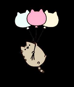 cat tumblr pusheen freetoedit
