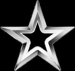 sticker star metallicstar metalliceffect silver