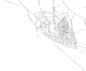 spi freetoedit spiderweb