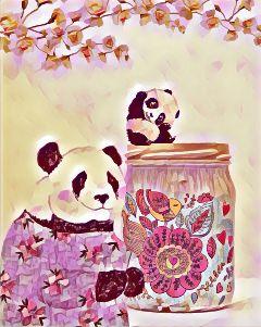 freetoedit pandas flowers