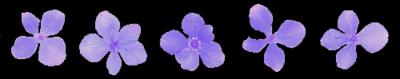 purple purpura morado lila girly ftestickers ftesticker freetoedit