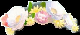 flores snapchat freetoedit