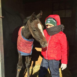 kids horse friendship friendshipismagic buddys