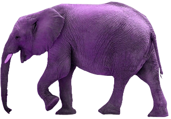 ftestickers purple elephant animal