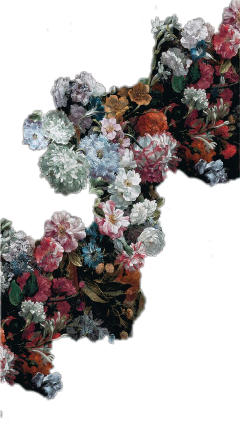spring flowers flowercrown rosesflower roses