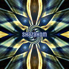 shzazhom1 mirrorart design patterns swirled
