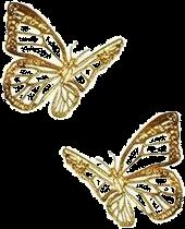 ftestickers butterflies freetoedit