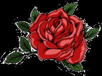 rosebud rosebudedits rose rosebuds red