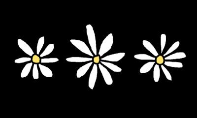 flower coroadeflores crown png tumblr