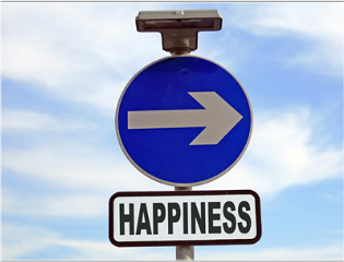 happyness signs life joy roadsign