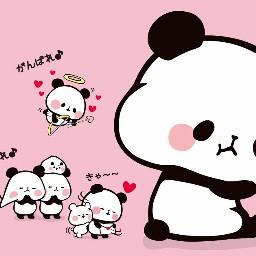 cute pandas colorful haveagoodnight