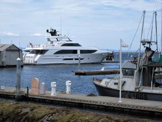 yacht freetoedit