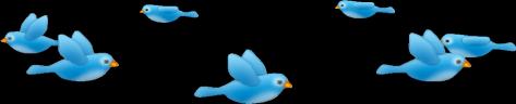 snapchat birds blue freetoedit