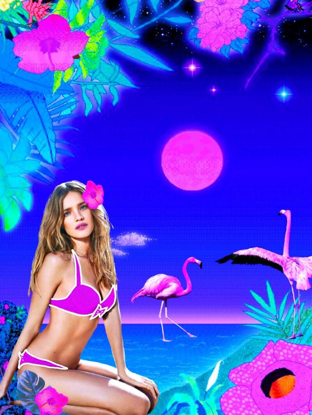 #natasupernova #vaporwave #outlines #flamingo