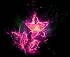 flower flor fire fuego flames