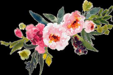 flowers color tumblr remixit freetoedit