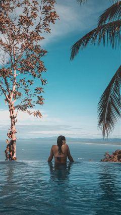 freetoedit trees palm sky nature