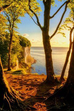 naturephotography colorful emotions summer freetoedit