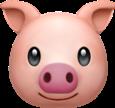 pig emoij overlay freetoedit