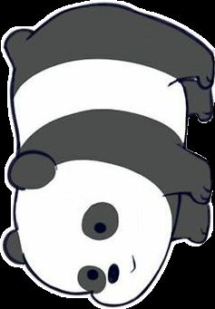 oso panda kawaii somososos boing