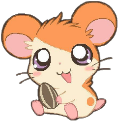 hamtaro hamster kawaii anime cute