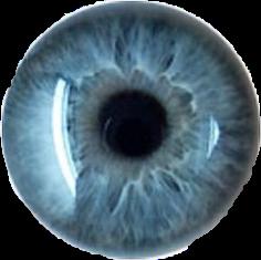 eyes ojo ojosazules ojosbonitos ojoazul
