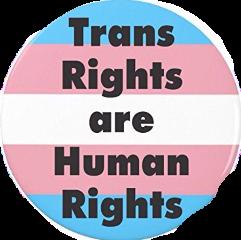trans freetoedit