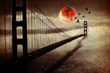freetoedit picsartedit pautzisedits bridge