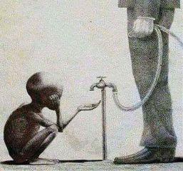 freetoedit starving