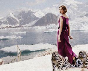 freetoedit nataliavodianova snowleapord iceberg cool