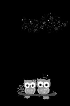 fteswing moon owl