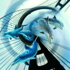 bridgeremix dolphins distort tinyplaneteffect freetoedit