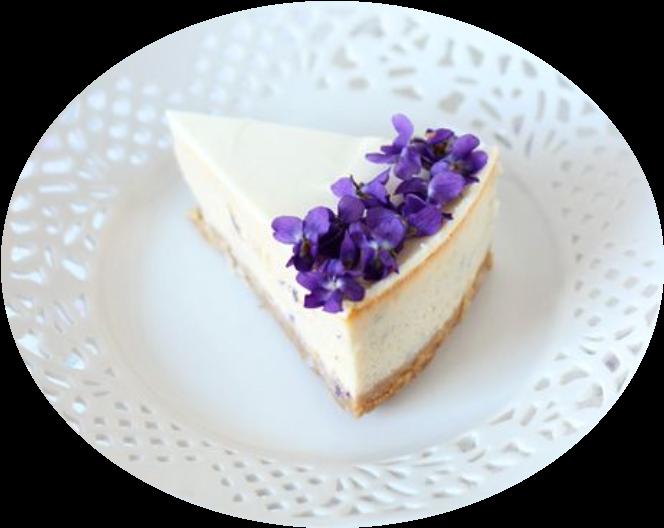 #ftecheesecake #cheesecake #cake