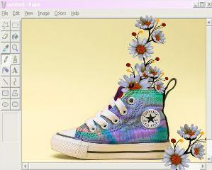 edited doubleexposure paint converse flowers freetoedit