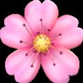 цветок freetoedit