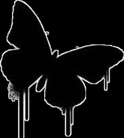 #mariposa