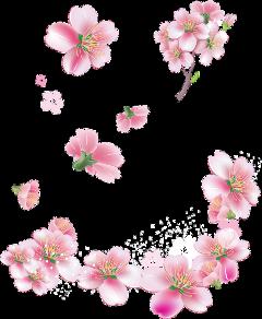 flower vintage freetoedit