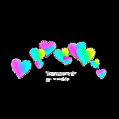 hearts heart coeurs corazones love