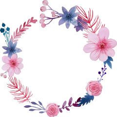 flowers floral frame border circleframe