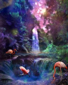 paradise colorful freetoedit