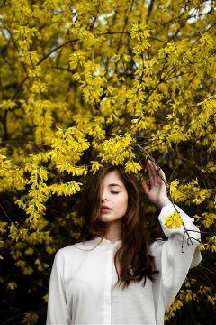 freetoedit tree girl flowers yellow