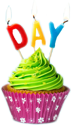 birthday colorful day happy cupcake