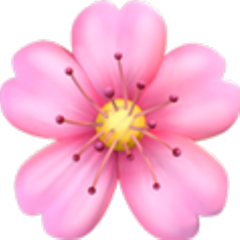 flor flowers flowor icon emoji